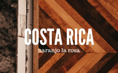 Brewing & Tasting: Costa Rica Naranjo la Rosa