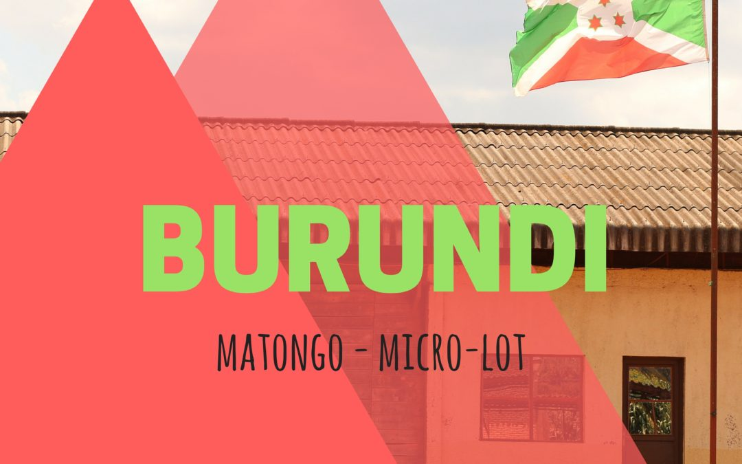 Brewing & Tasting: Burundi Matongo