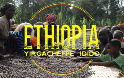 Brewing & Tasting: Ethiopia Idido