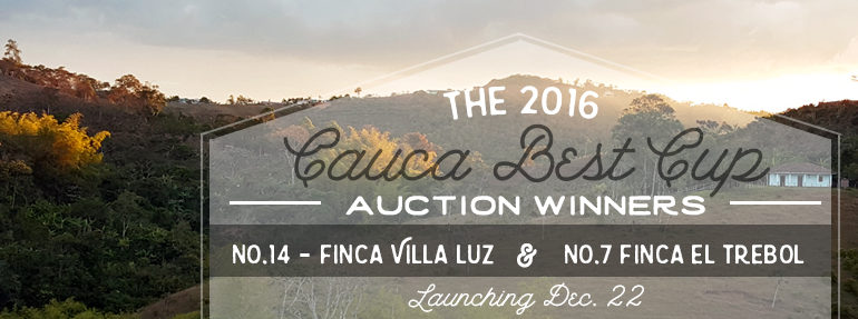Join Us – Cauca Best Cup Auction Coffee Launch