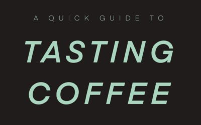 A Guide To Tasting Coffee